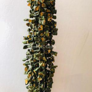 Kurutulmuş Yeşil Kabak ( 1 Bağı )